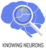 Knowing Neurons logo