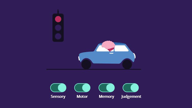 A cartoon brain riding in a car with toggles below