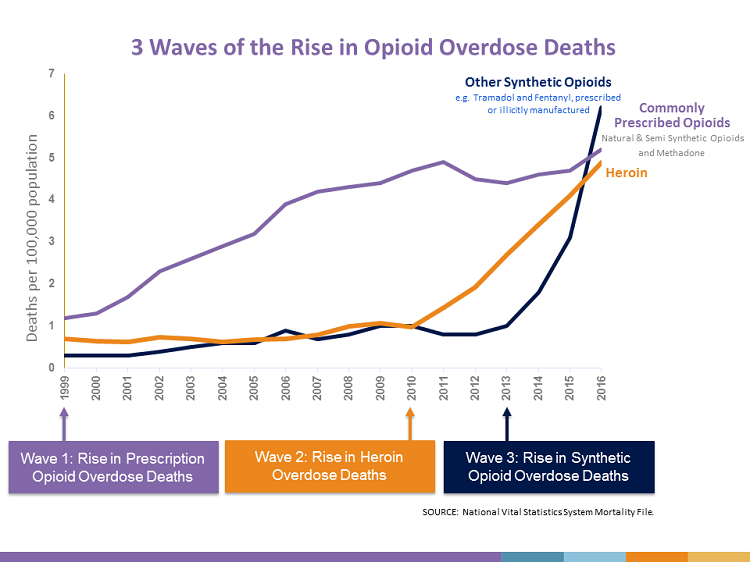 Graph of opioid overdose deaths