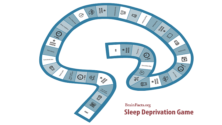 Sleep Board Game