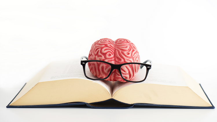 Funny photograph of a toy brain with toy glasses resting on an open book