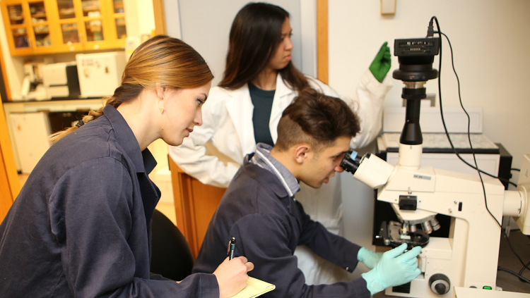 Students working in a neuroscience laboratory