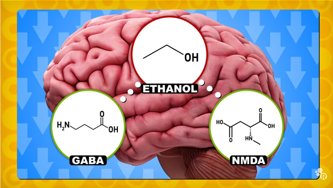 Image of brain in the background with chemical compound of ethanol.
