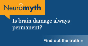 Neuromyth: Brain Damage is always permanent.
