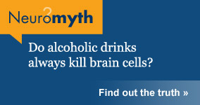 Neuromyth: Do alcoholic drinks always kill brain cells?