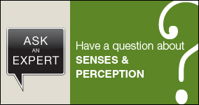 Ask an expert. Submit a question about senses and perception.