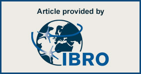 Article provided by IBRO