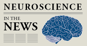 Neuroscience in the News