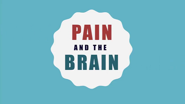 Pain and the Brain