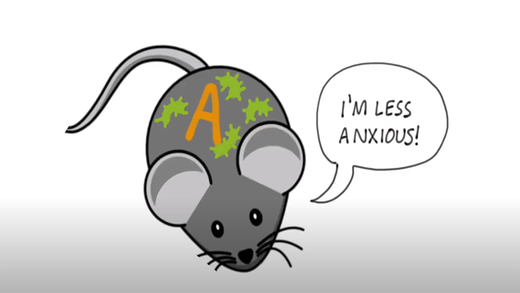 Mouse with word bubble