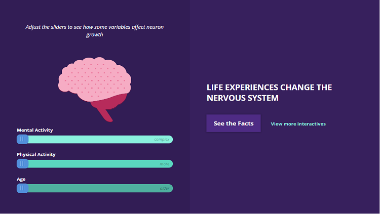 Life experiences change the nervous system