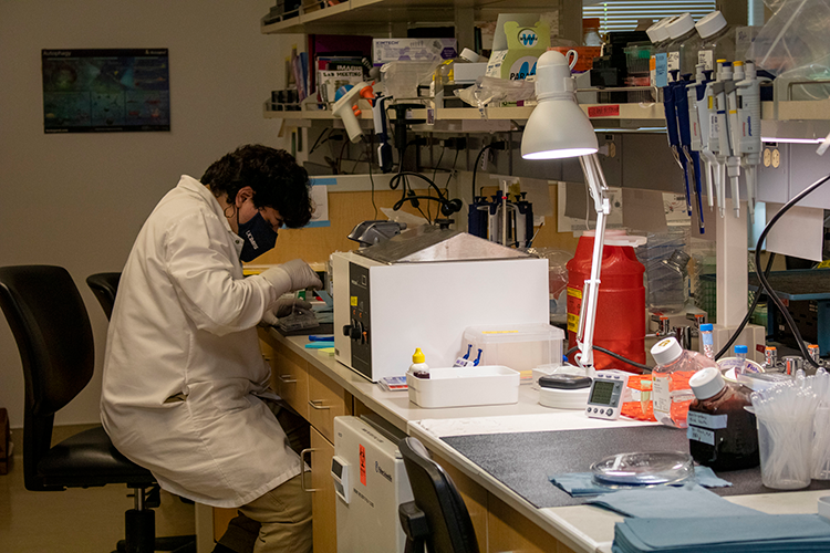 Student sitting in lab
