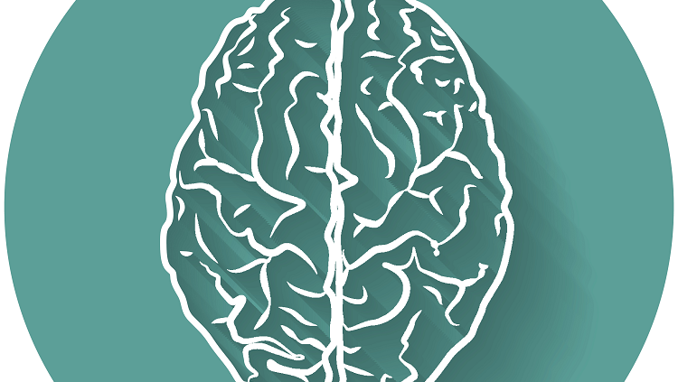 brain on green background
