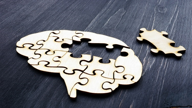 Brain from wooden puzzles