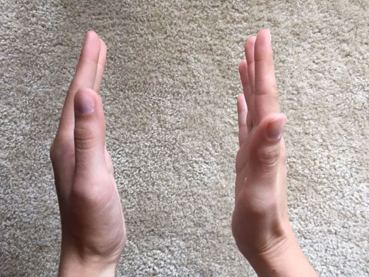 hands facing each other