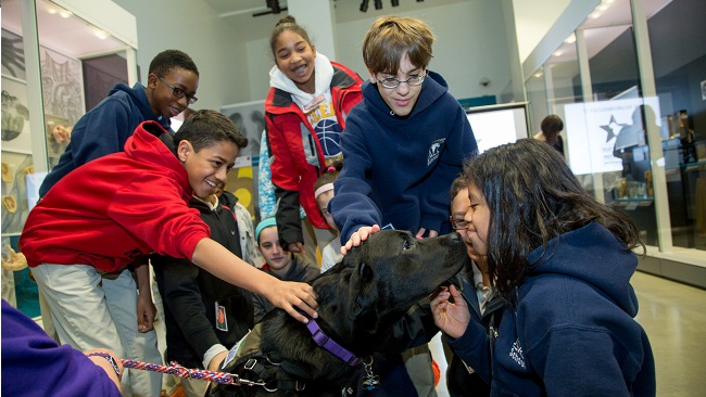 Students interact with a service dog at a Brain Awareness Week Event at the National Museum of Health and Medicine.