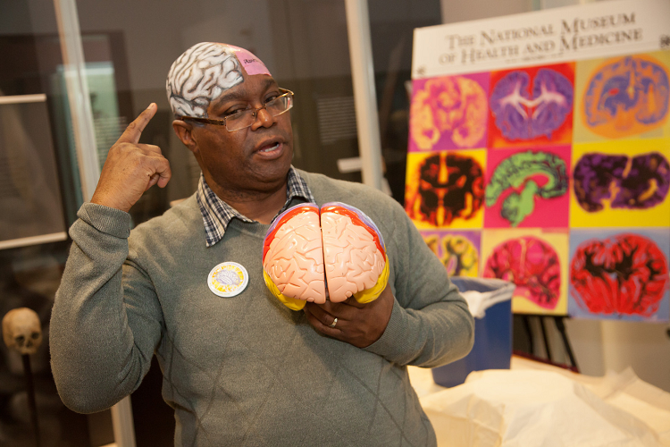 A neuroscientist shares his love of the brain with students during Brain Awareness Week at the National Museum of Health and Medicine.