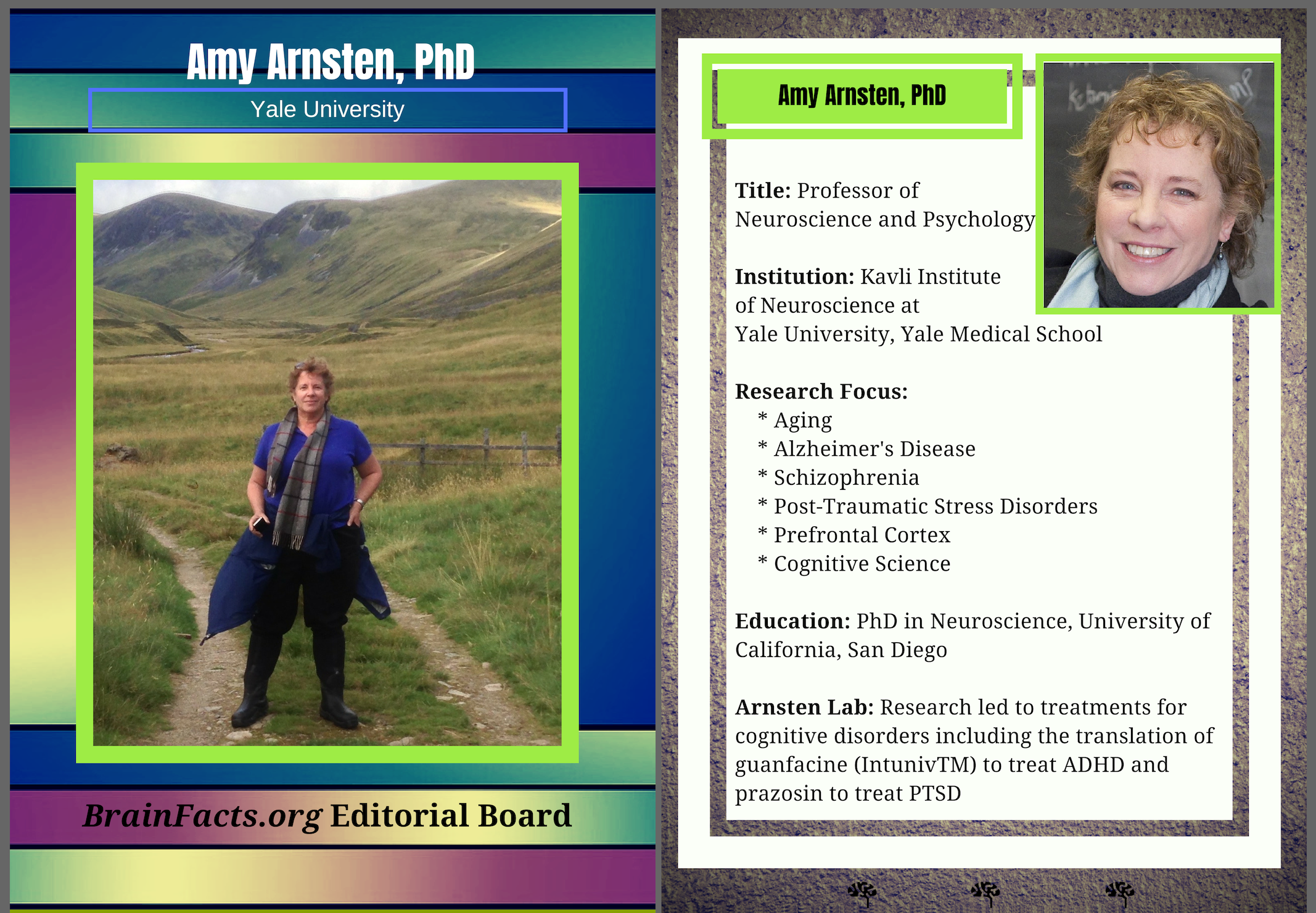 Photograph of Amy Arnsten with facts on the side