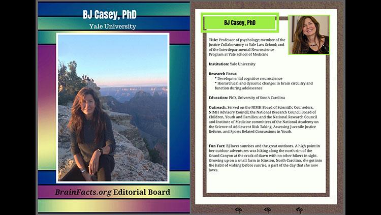 BJ Casey editorial baseball card