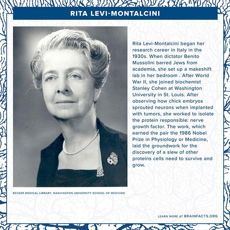 Rita Levi Montalcini Brain Byte final