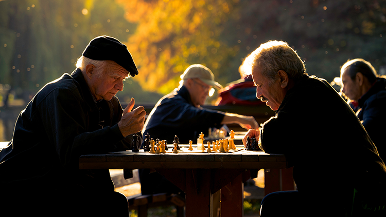 men playing chess at park