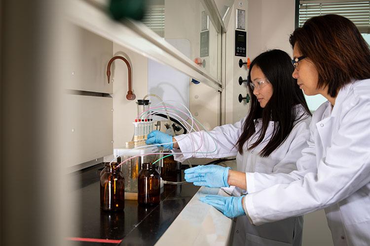 Diana Aga in lab