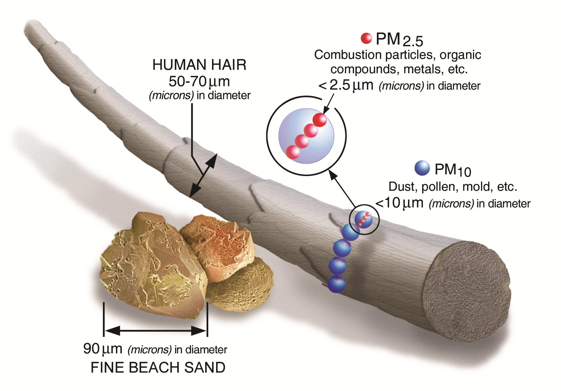 Illustration of PM25