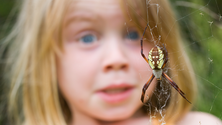girl sees spider