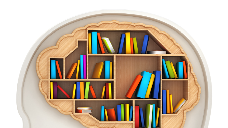 Cartoon of brain with shelves and books inside of it