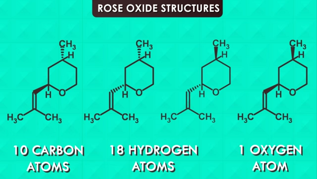 Oxide structures of a rose.