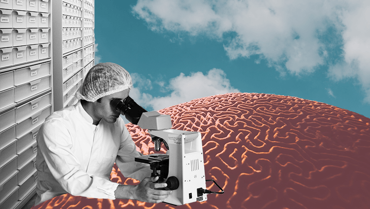Collage of researcher, brain coral, and open sky