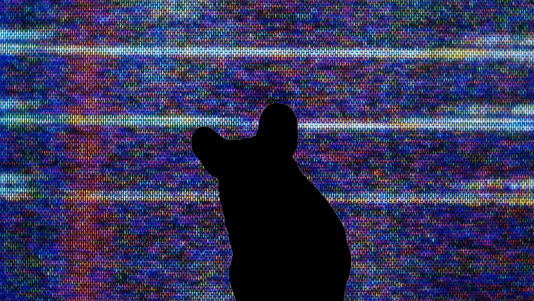 Image of a mouse in front of a television